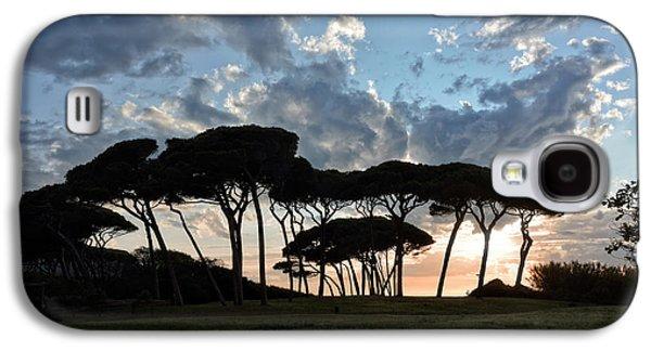The Baratti Pine Trees Galaxy S4 Case by Joachim G Pinkawa
