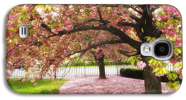 Cherry Blossoms Galaxy S4 Cases - The Cherry Tree Galaxy S4 Case by Jessica Jenney