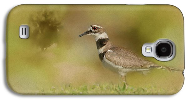 The Elusive Killdeer Galaxy S4 Case by Jai Johnson