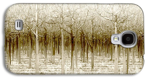 Holly Kempe Galaxy S4 Cases - The Forest for the Trees Galaxy S4 Case by Holly Kempe