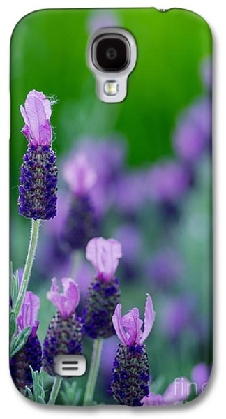 Bloosom Galaxy S4 Cases - The Fuzzy One Galaxy S4 Case by Nick  Boren