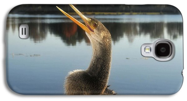 The Great Golden Crested Anhinga Galaxy S4 Case by David Lee Thompson