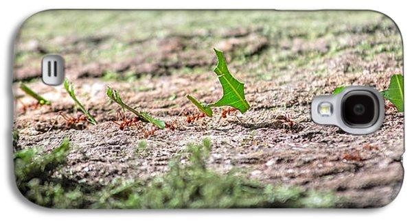 The Leaf Parade  Galaxy S4 Case by Betsy Knapp