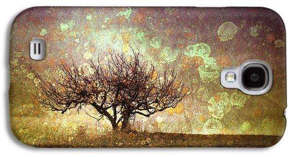 Tara Turner Galaxy S4 Cases - The Lone Tree Galaxy S4 Case by Tara Turner