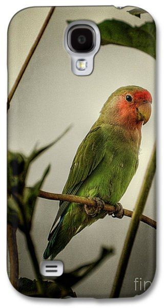 The Lovebird  Galaxy S4 Case by Saija  Lehtonen