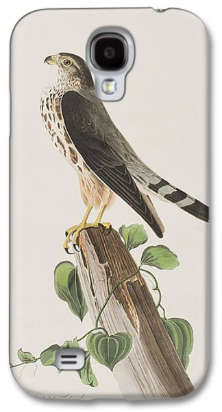 Ornithology Paintings Galaxy S4 Cases - The Merlin Galaxy S4 Case by John James Audubon