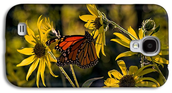 The Monarch And The Sunflower Galaxy S4 Case by Rick Berk