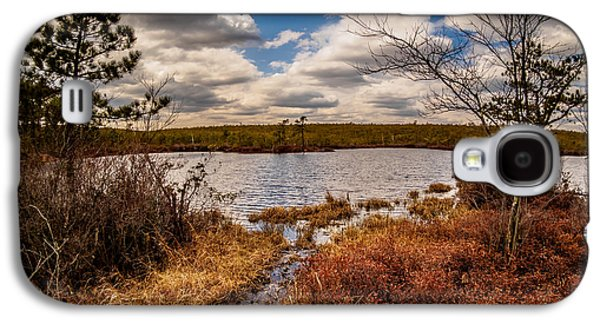 Pine Barrens Galaxy S4 Cases - The Mysterious Pine Lands Galaxy S4 Case by Louis Dallara