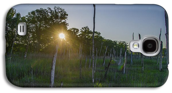 Pine Barrens Galaxy S4 Cases - The New Jersey Pine Barrens Galaxy S4 Case by Bill Cannon