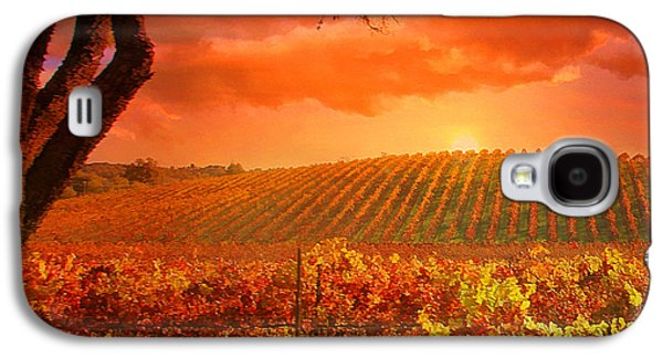 Vineyard Art Galaxy S4 Cases - The other side of Oz Vineyard Galaxy S4 Case by Stephanie Laird