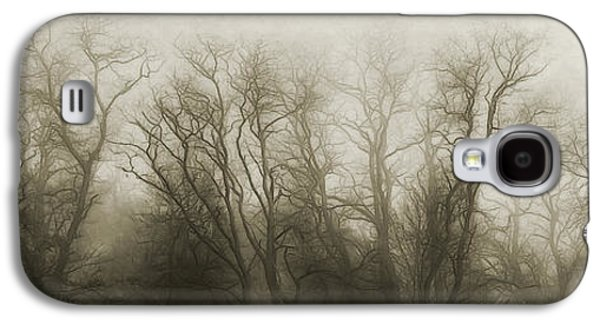 Abstract Digital Galaxy S4 Cases - The Secrets of the Trees Galaxy S4 Case by Scott Norris