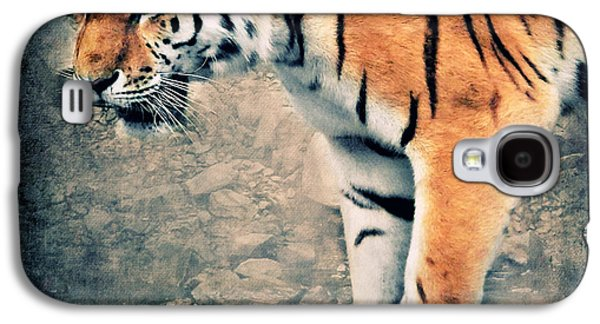 Tiger Galaxy S4 Cases - The Tiger Galaxy S4 Case by Angela Doelling AD DESIGN Photo and PhotoArt