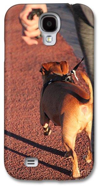 Dog Trots Galaxy S4 Cases - The walk Galaxy S4 Case by Jennifer Doll