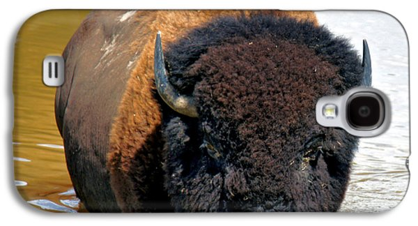 Bison Digital Galaxy S4 Cases - The Water Hole Galaxy S4 Case by Mary Dreher