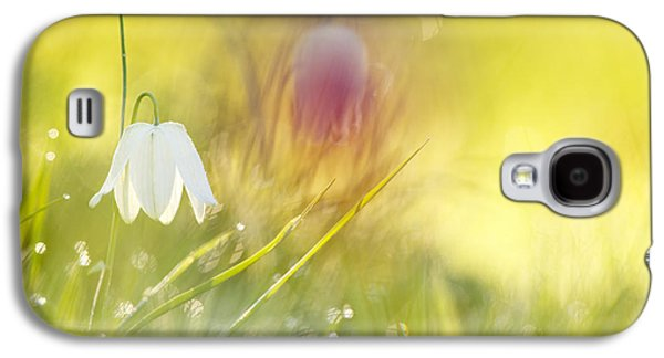 Meleagris Galaxy S4 Cases - The White Queen Galaxy S4 Case by Roeselien Raimond