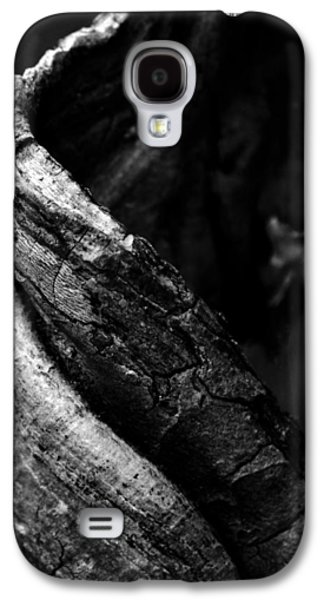 Tree Roots Galaxy S4 Cases - Themselves Alone Galaxy S4 Case by Rebecca Sherman