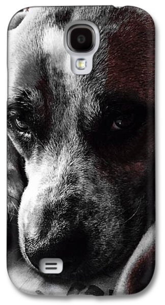 Puppy Digital Galaxy S4 Cases - Thinking Dog Galaxy S4 Case by Bryce Couture