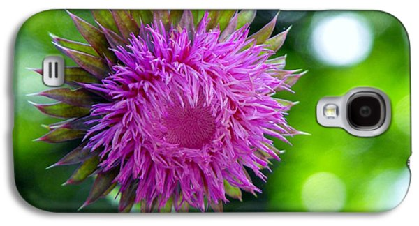 Botanical Galaxy S4 Cases - Thistle flowerhead Galaxy S4 Case by Diane McDougall