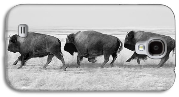 Three Buffalo In Black And White Galaxy S4 Case by Todd Klassy