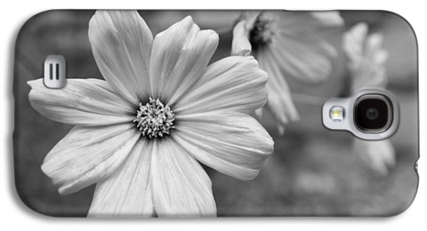 Nature Abstract Galaxy S4 Cases - Three Daisies Galaxy S4 Case by Steven Green