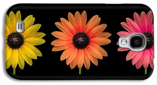 Floral Photographs Galaxy S4 Cases - Three Flowers Galaxy S4 Case by Hudson Marsh