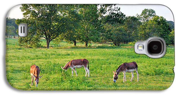 Tennessee Farm Galaxy S4 Cases - Three Jacks Galaxy S4 Case by Jan Amiss Photography