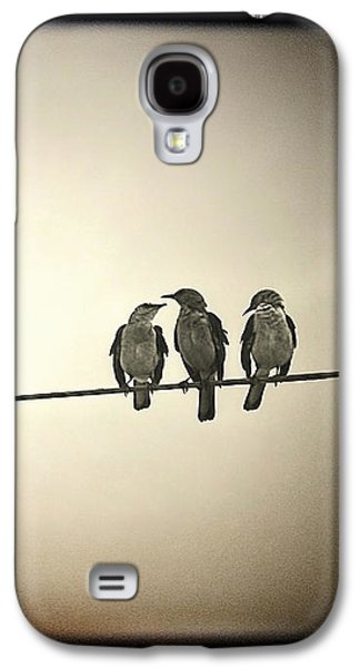 Electrical Photographs Galaxy S4 Cases - Three Little Birds Galaxy S4 Case by Trish Mistric