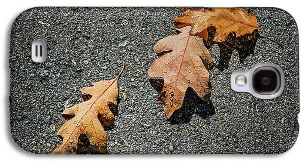 Three Oak Leaves Galaxy S4 Case by Scott Norris