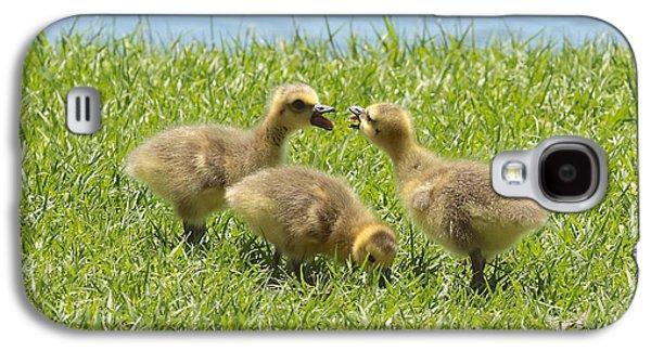 Three Chicks Galaxy S4 Cases - Threes a Crowd Galaxy S4 Case by Carol Groenen