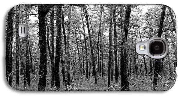 Through The Pinelands Galaxy S4 Case by John Rizzuto