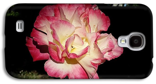 Floral Ceramics Galaxy S4 Cases - Tiffany Rose Galaxy S4 Case by Clint  Saunders