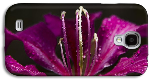 To Be Blessed Galaxy S4 Case by Sharon Mau