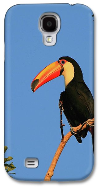 Toco Toucan Galaxy S4 Case by Bruce J Robinson