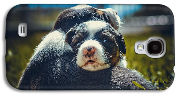Puppies Galaxy S4 Cases - Together We Will Galaxy S4 Case by Steeven Shaw