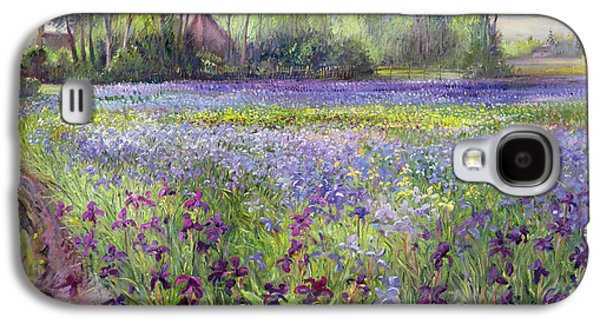 Past Paintings Galaxy S4 Cases - Trackway past the Iris Field Galaxy S4 Case by Timothy Easton
