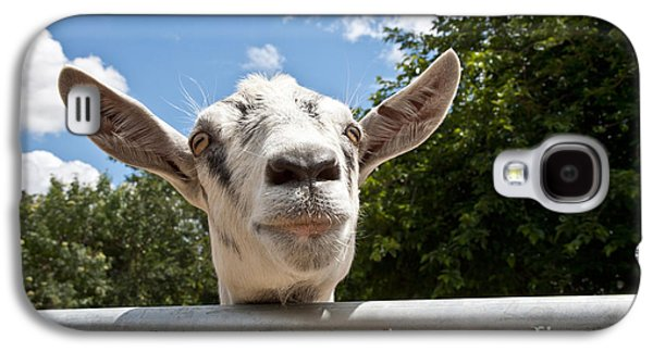 Uc Davis Galaxy S4 Cases - Transgenic Goat Peering Over Fence Galaxy S4 Case by Inga Spence