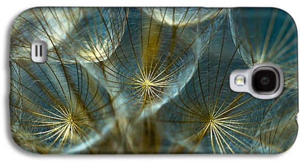 Best Sellers -  - Nature Abstracts Galaxy S4 Cases - Translucid Dandelions Galaxy S4 Case by Iris Greenwell