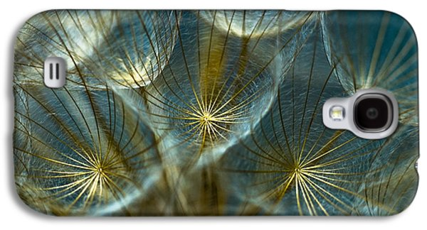 Translucid Dandelions Galaxy S4 Case by Iris Greenwell