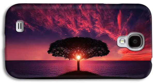 Sunset Prints Galaxy S4 Cases - Tree in sunset Galaxy S4 Case by Bess Hamiti