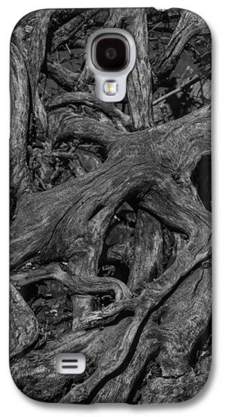 Tree Roots Black And White Galaxy S4 Case by Garry Gay