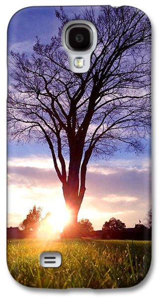 Charlotte Mixed Media Galaxy S4 Cases - Tree Sun Lit Galaxy S4 Case by Morgan Carter