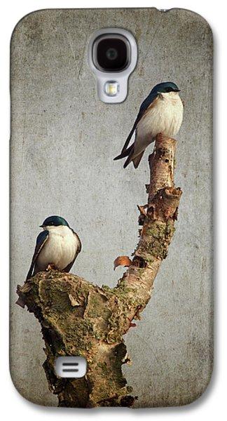 Swallow Galaxy S4 Cases - Tree Swallows Galaxy S4 Case by Al  Mueller