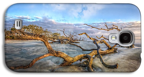 Landscapes Photographs Galaxy S4 Cases - Trees at Dawn Galaxy S4 Case by Debra and Dave Vanderlaan