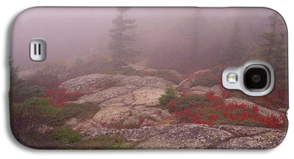 Maine Mountains Galaxy S4 Cases - Trees Covered With Fog, Cadillac Galaxy S4 Case by Panoramic Images