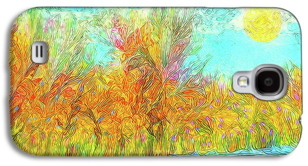 Sun Galaxy S4 Cases - Trees Flow With Sky - Boulder County Colorado Galaxy S4 Case by Joel Bruce Wallach
