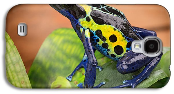 Frogs Photographs Galaxy S4 Cases - Tropical Poison Dart Frog Galaxy S4 Case by Dirk Ercken