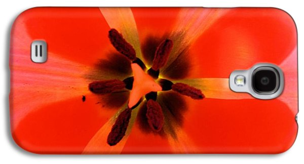 Nature Abstract Galaxy S4 Cases - True Love Galaxy S4 Case by Robyn King