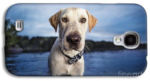 Leda Photography Galaxy S4 Cases - Tucker Galaxy S4 Case by Leslie Leda