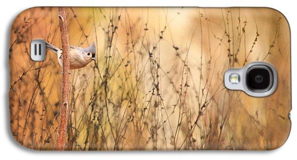 Tufted Titmouse Galaxy S4 Case by Lori Deiter