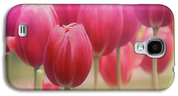 Botanical Galaxy S4 Cases - Tulips Entwined Galaxy S4 Case by Carol Japp